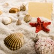 Holiday beach concept — Foto Stock