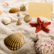 Holiday beach concept — Stock Photo