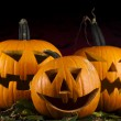 Halloween pumpkins in the Grass Bats — Stock Photo