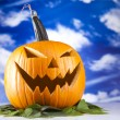 Pumpkin for Halloween — Stock Photo #31571499