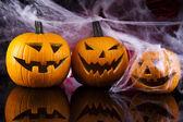 Spinnennetz, halloween kürbis jack — Stockfoto