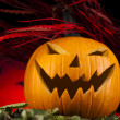 Pumpkin for Halloween — Stock Photo #31594031