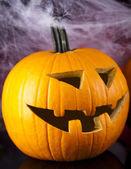 Halloween pumpkin Jack, spider web — Stock Photo