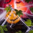 Halloween background with web and spider,pumpkin — Stock Photo #32562277