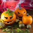 Scary Jack, halloween pumpkin and spider — Stock Photo #32562385