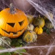 Halloween pumpkin Jack — Stock Photo