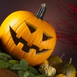 Funny face pumpkin, Halloween — Stock Photo