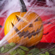Halloween background with web and spider,pumpkin — Stock Photo #32562765