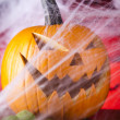 Halloween background with web and spider,pumpkin — Stock Photo