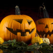 Halloween Pumpkin, Scary Jack — Stock Photo