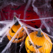 Scary Jack, halloween pumpkin and spider — Stock Photo #32563263