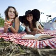 Girlfriends on picnic — Stock Photo #32564249