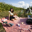 Girl on a picnic with laptop — Foto Stock