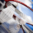 Stock Photo: Badminton shuttlecock