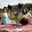 Friends Enjoying Picnic — Stock Photo