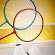 Shuttlecock on badminton racket — Stock Photo #34179809