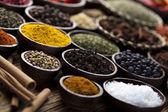 Spices — Foto de Stock
