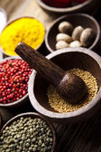 Spice stil life — Stock Photo