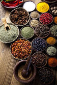Exotic Spices — Stock Photo