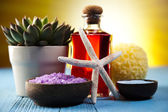 Natural bath salt, organic products, Spa — Stock Photo