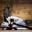 Lady justice — Stock Photo #41648879