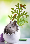 Easter bunny, egg and tree — Stok fotoğraf