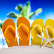 Colorful flip flops — Stock Photo #49135867