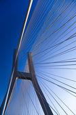 Rope bridge — Stockfoto