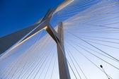 Most linowy — Zdjęcie stockowe
