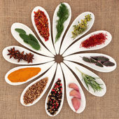 Spice and Herb Selection — Foto Stock