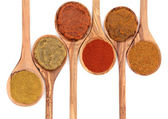 Curry Powder and Paste — Stock Photo