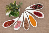 Spice and Herb Selection — Stock Photo
