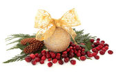 Sparkling Bauble and Cranberries — Stock Photo