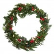 Christmas Wreath — Stock Photo #13394597