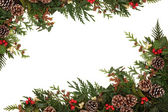 Traditional Winter Border — Stock Photo
