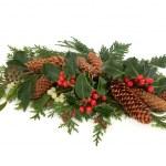 Winter Flora Decorative Spray — Stock Photo
