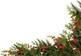 Seasonal Christmas Border — Stock Photo