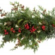 Holly, Ivy, Mistletoe and Cedar Leaves — Stock Photo