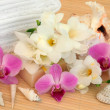 Floral Spa Treatment — Stock Photo #13797110