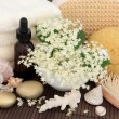 Elderflower Spa Treatment — Stock Photo