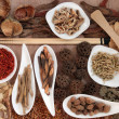 chinese medicine — Stock Photo