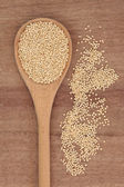 Quinoa Grain — Stock Photo