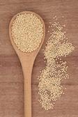 Quinoa getreide — Stockfoto