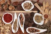 Medicina cinese — Foto Stock
