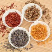 Herb and Spice Selection — Stock Photo