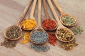 Naturopathic Herbs — Stock Photo