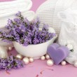 Lavender Herb Accessories — Stock Photo