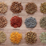 Magical and Medicinal Herbs — Stock Photo