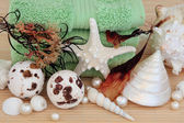 Seaweed Spa — Stockfoto