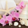 Tropical Spa Treatment - Stock Photo